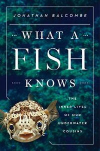 What A Fish Knows cover